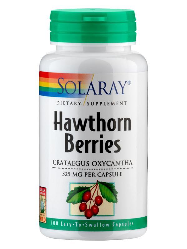 Weißdornbeeren mit biologisch aktiven Flavonoiden
